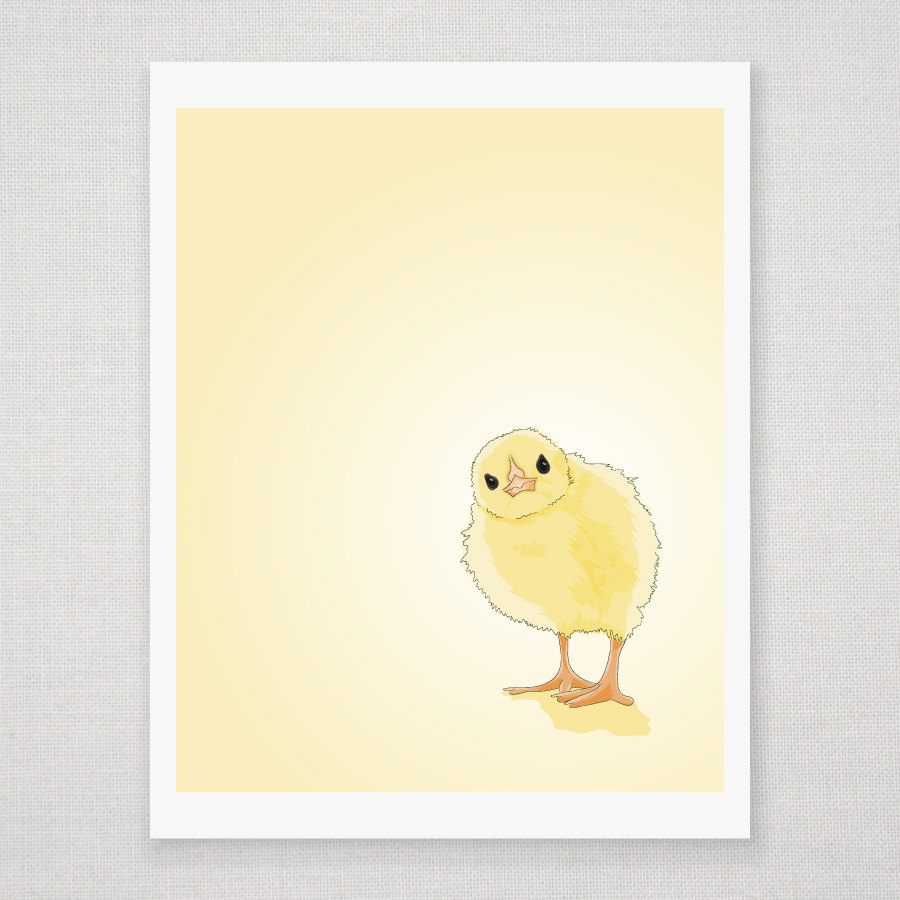 Spring Yellow Baby Chick - Illustrated Print - 8 x 10 Archival Matte