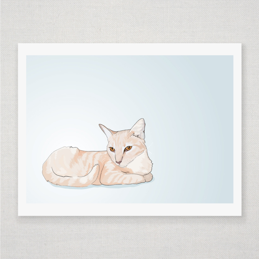 Peach Tabby Cat - Blue Illustrated Print - 8 x 10 Archival Matte Print